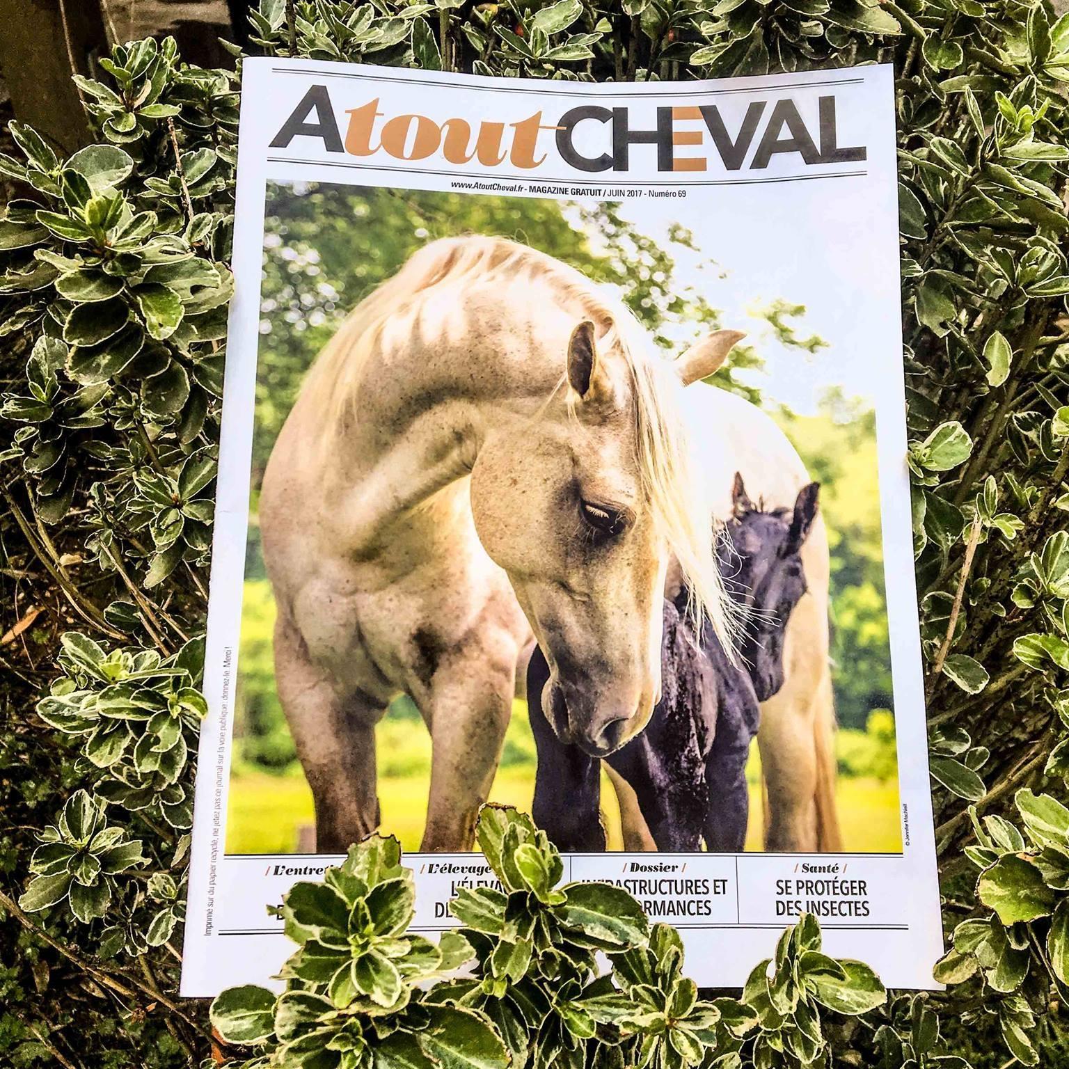 atout cheval - Atout Cheval - Horse Immo : L'expert immobilier très à cheval