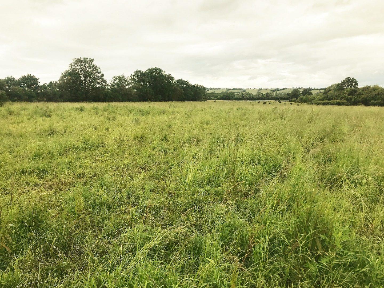 1561381017 VT064 1 original - Terrain Constructible de 11 hectares au Sud de Bourges