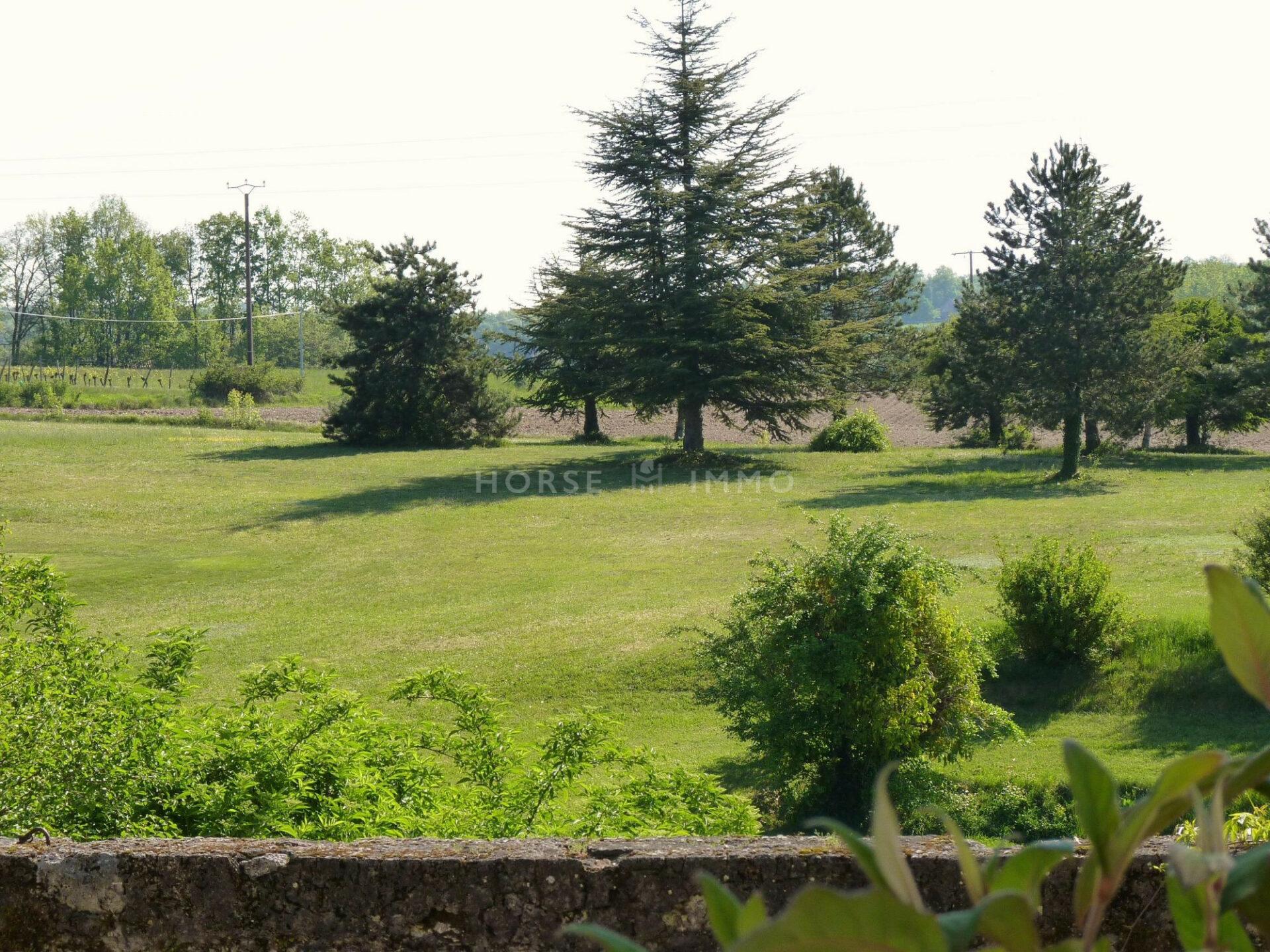 1615905997 VM1712 7 original 1920x1440 - Château de 340m² sur 3.5ha à 15 min de Bergerac